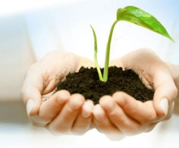 Respondemos 5 dúvidas comuns de quem quer começar um investimento